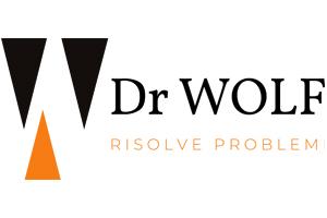LogoDRWIOLF