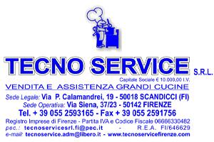 LogoTECNser
